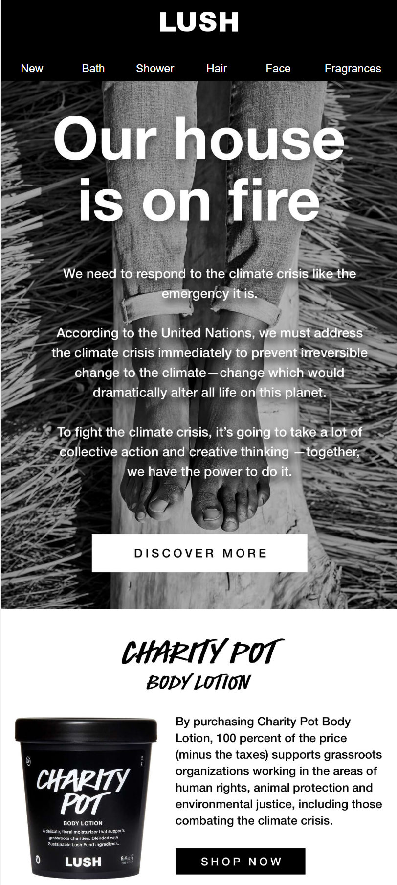 Lush climate change email campaign